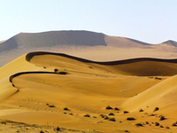 tl_files/images/flitterwochen/august/Namibia/Namib Duene.jpg
